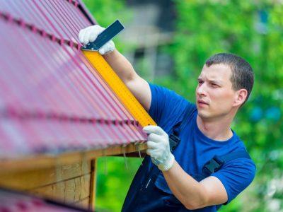 roof professional